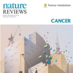 The interplay between cell signalling and the mevalonate pathway in cancer